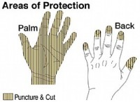 duty - Areas of Protection